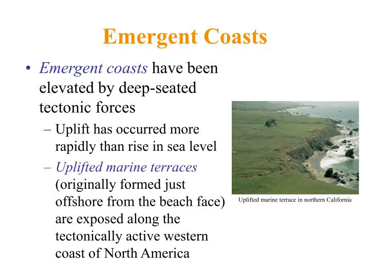Emergent Coasts