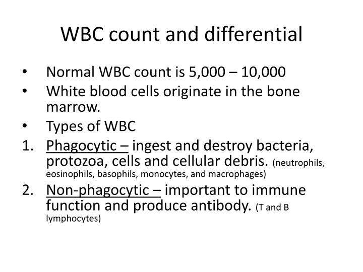 WBC count and differential