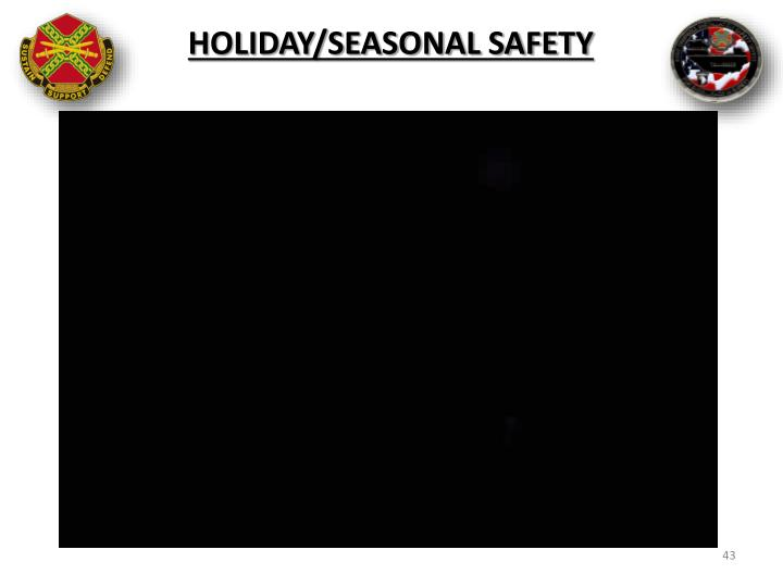 Holiday/Seasonal Safety