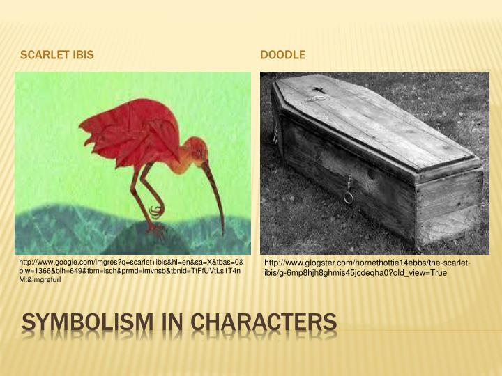 Ppt First 2 Paragraphs Of The Scarlet Ibis Powerpoint