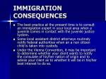 immigration consequences26
