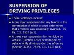suspension of driving privileges28