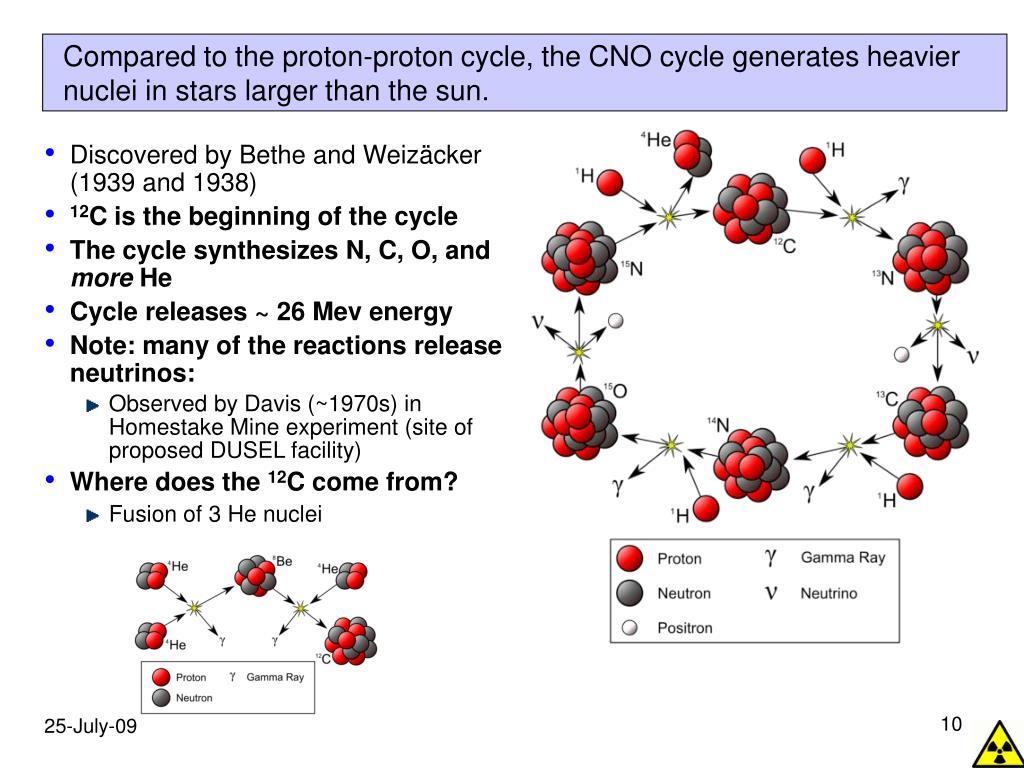 Compared to the proton-proton cycle, the CNO cycle generates heavier nuclei in stars larger than the sun.