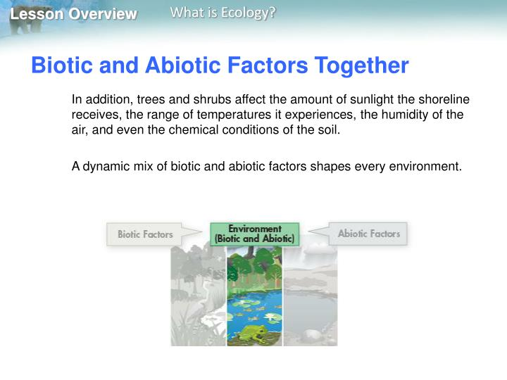 Biotic and Abiotic Factors Together
