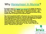 why honeymoon in munnar