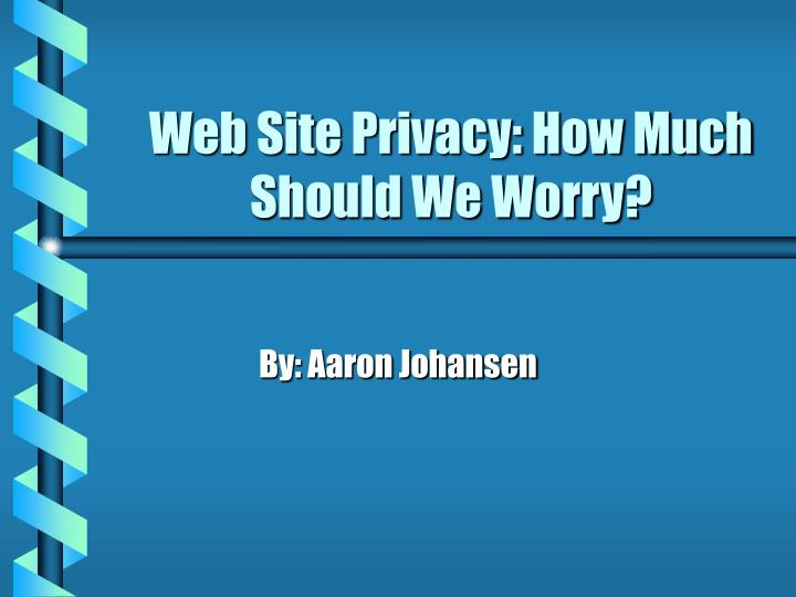 web site privacy how much should we worry n.