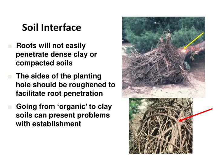 Soil Interface