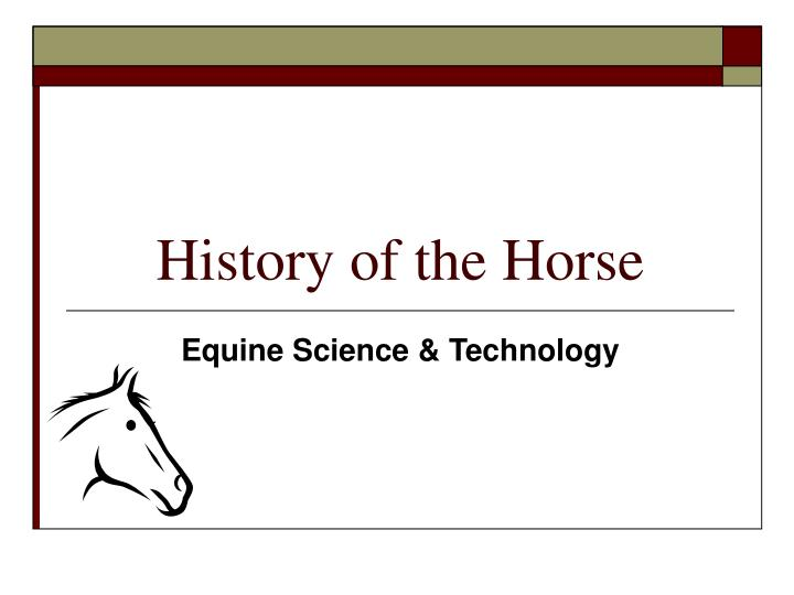 history of the horse n.