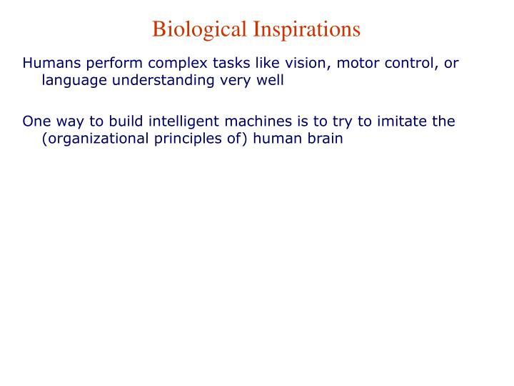 Biological Inspirations