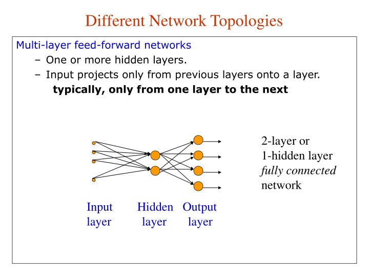Different Network Topologies