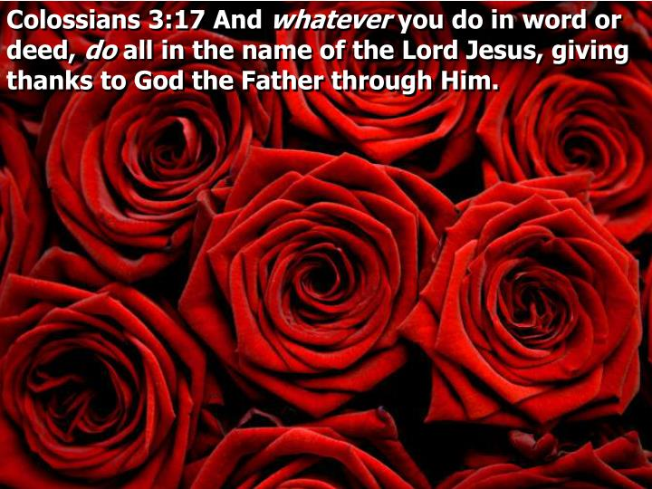 Colossians 3:17 And