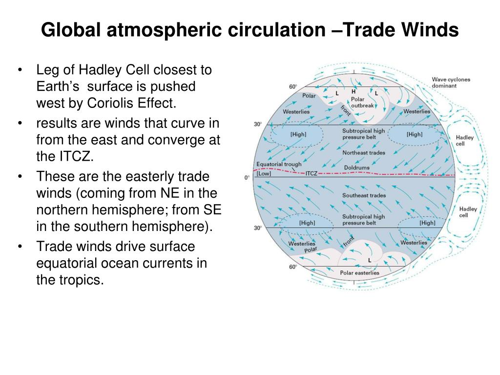 Global atmospheric circulation –Trade Winds