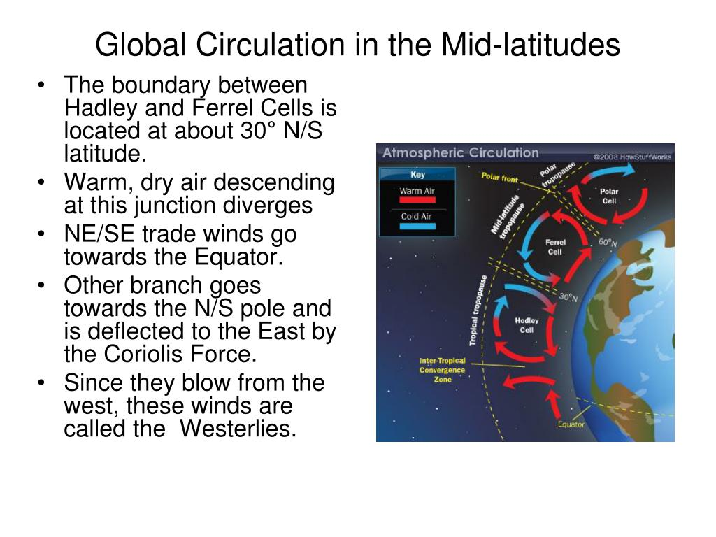 Global Circulation in the Mid-latitudes