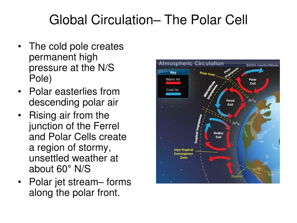 Global Circulation– The Polar Cell