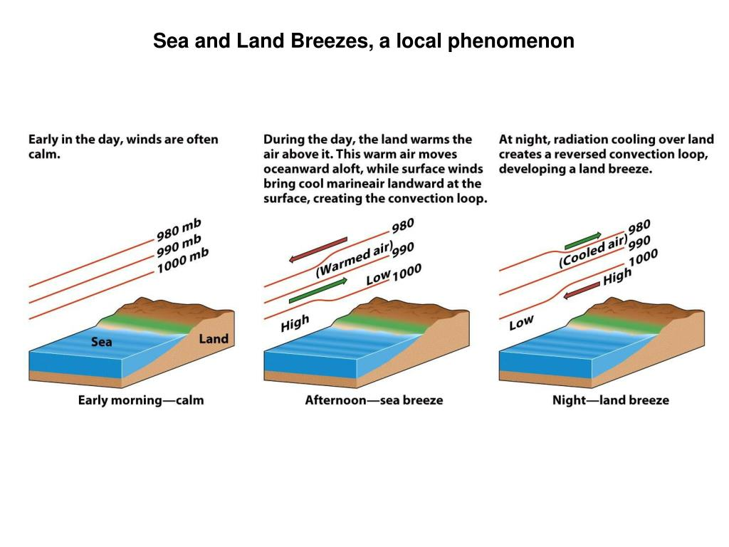 Sea and Land Breezes, a local phenomenon