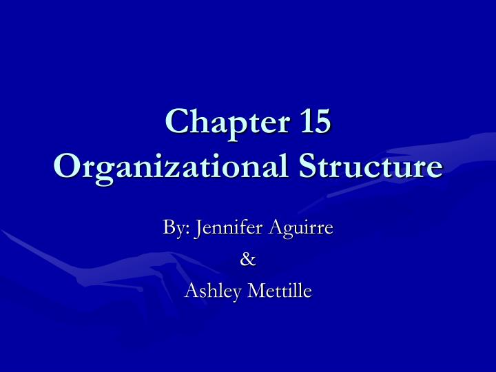chapter 15 organizational structure n.