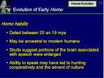 evolution of early homo