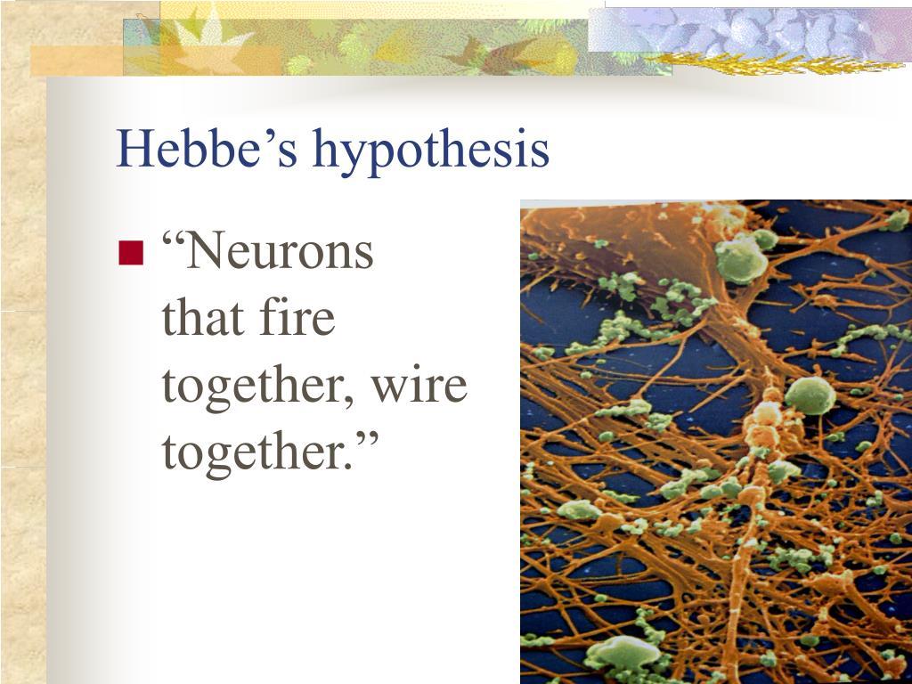 Hebbe's hypothesis