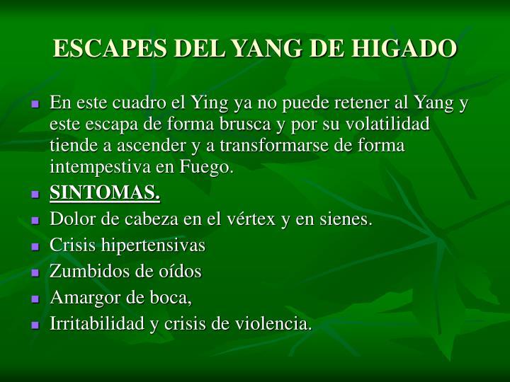ESCAPES DEL YANG DE HIGADO