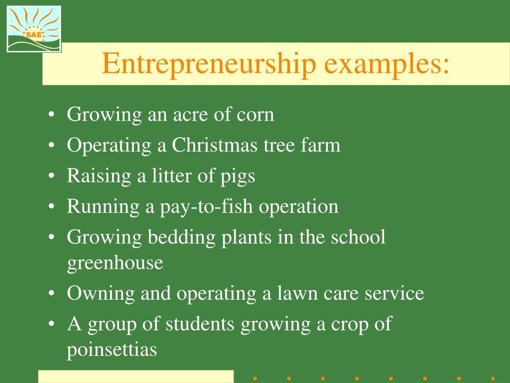 Entrepreneurship examples: