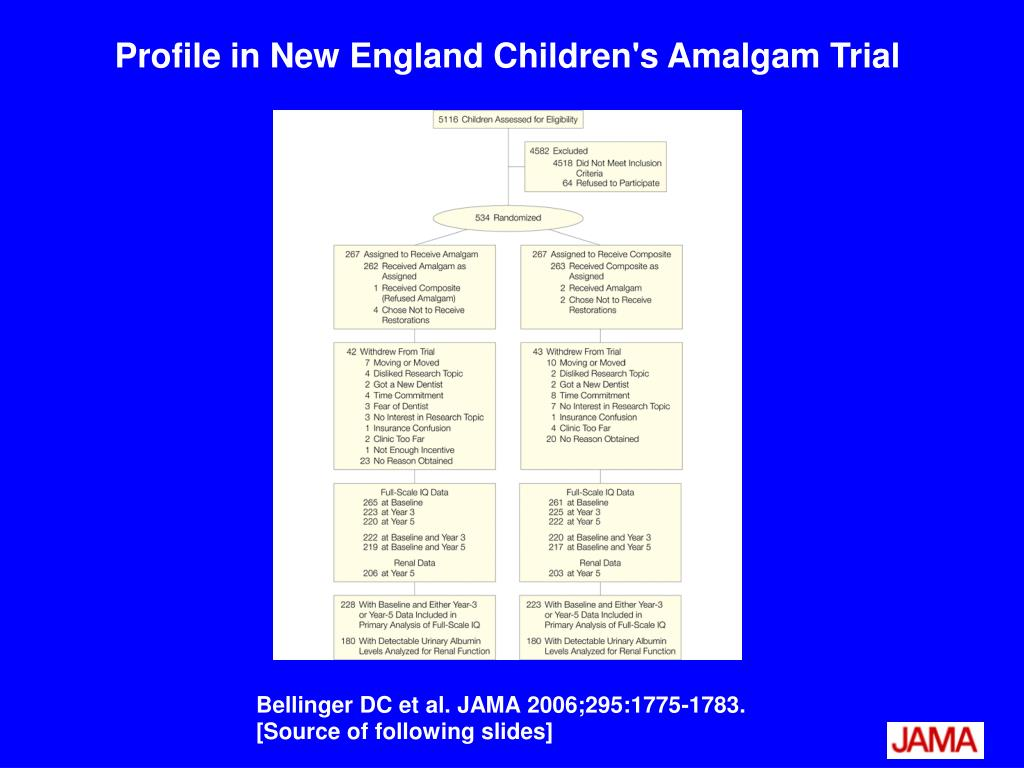 Profile in New England Children's Amalgam Trial