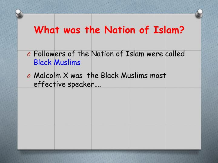 What was the Nation of Islam?