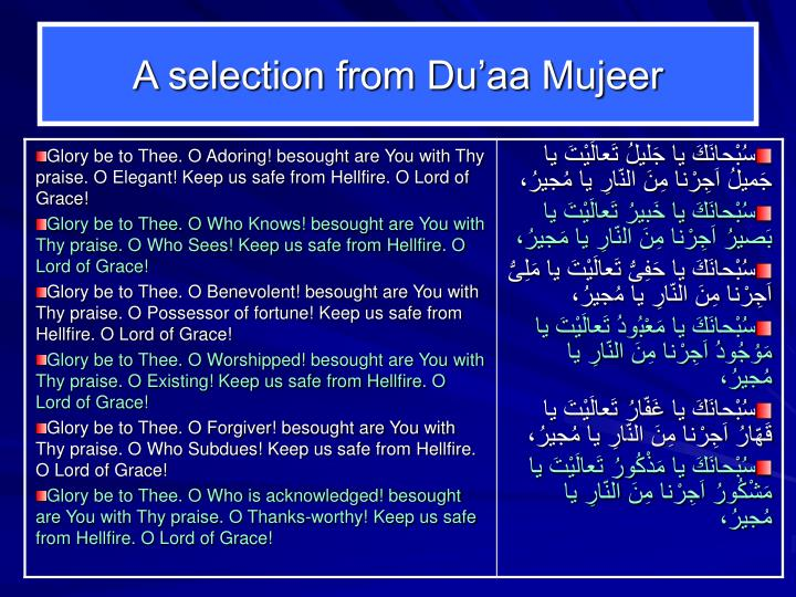 A selection from Du'aa Mujeer