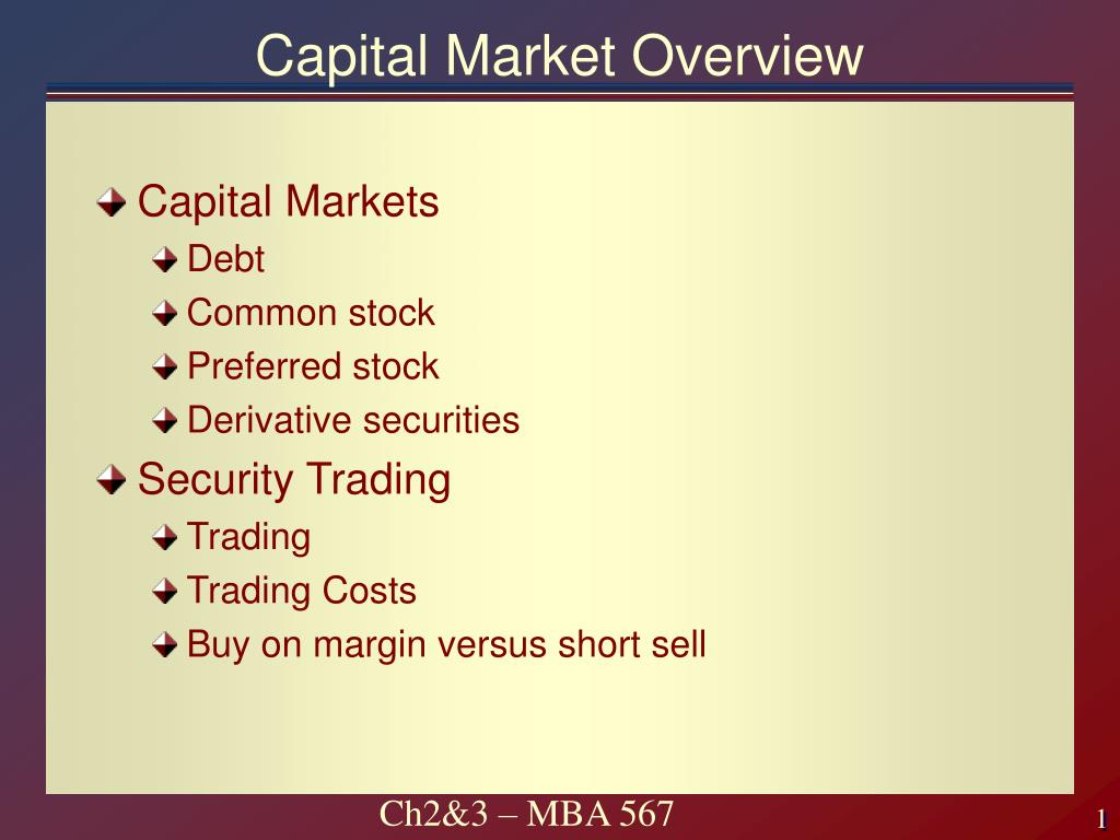 capital market overview l.