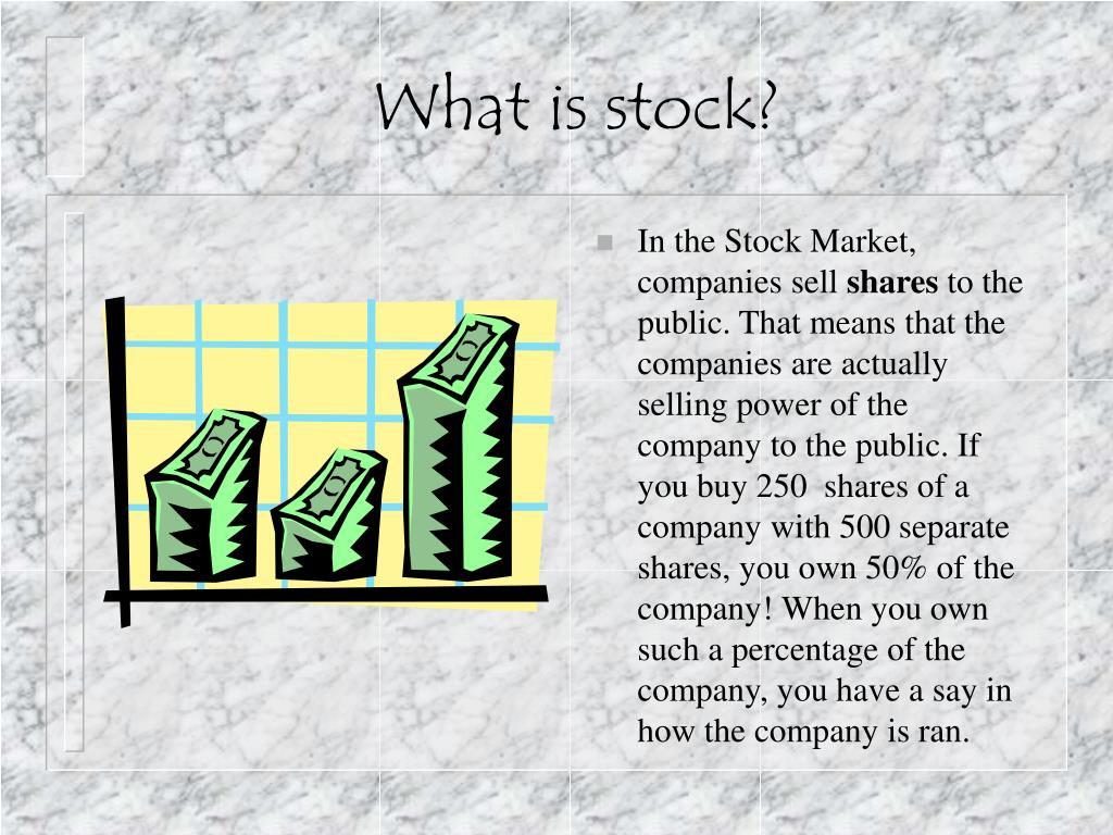What is stock?