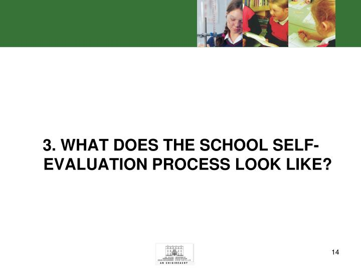 3. WHAT DOES THE SCHOOL SELF-EVALUATION PROCESS LOOK LIKE?