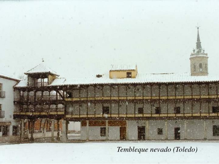 Tembleque nevado (Toledo)