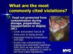 what are the most commonly cited violations43