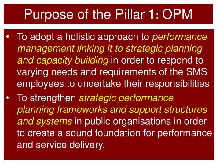 Purpose of the Pillar