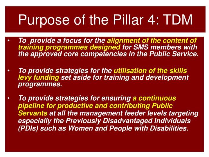 Purpose of the Pillar 4: TDM