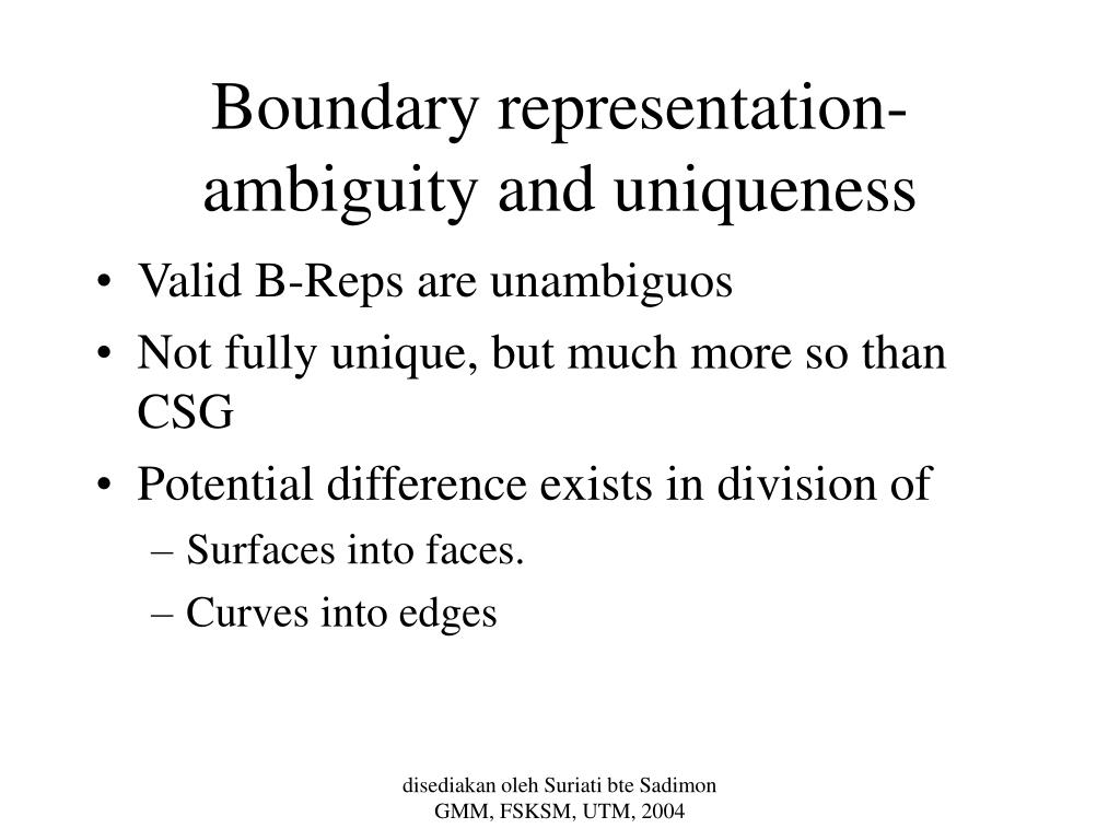 Boundary representation- ambiguity and uniqueness