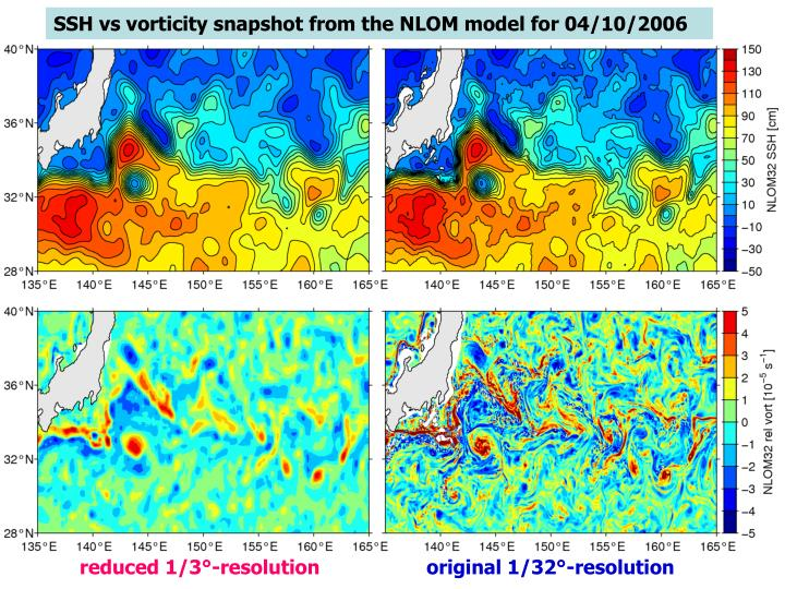 SSH vs vorticity snapshot from the NLOM model for 04/10/2006