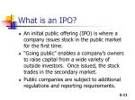what is an ipo