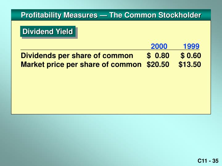 Profitability Measures — The Common Stockholder