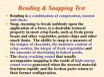 bending snapping test