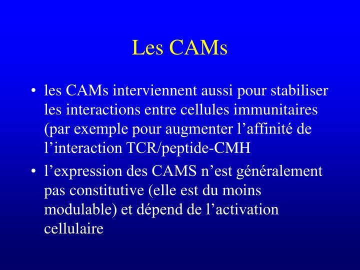 Les CAMs