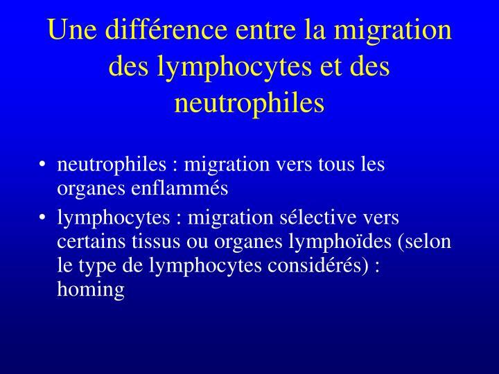Une différence entre la migration des lymphocytes et des neutrophiles