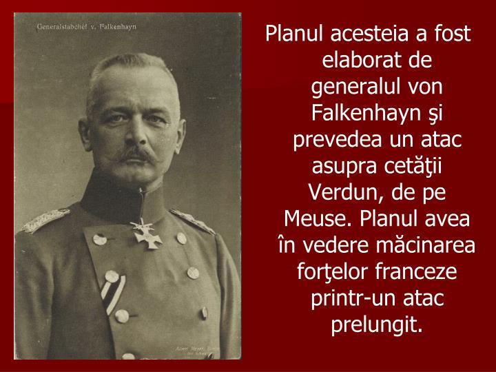 Planul acesteia a fost elaborat de generalul von Falkenhayn şi prevedea un atac asupra cetăţii Verdun, de pe Meuse. Planul avea în vedere măcinarea forţelor franceze printr-un atac prelungit.