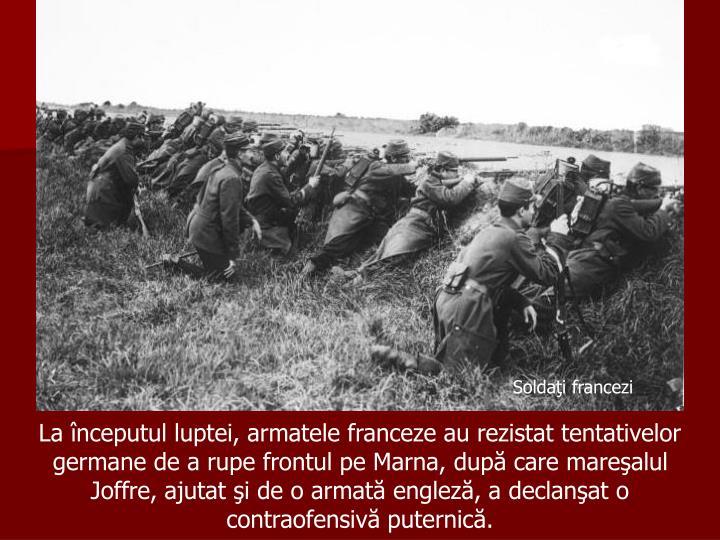 Soldaţi francezi