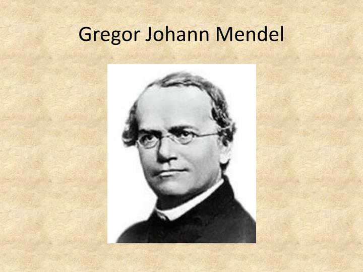 famous biologist gregor mendel Gregor mendel is known as the father of modern genetics he is a pretty big name in the science world he is a pretty big name in the science world however, he did not receive any of this credit.