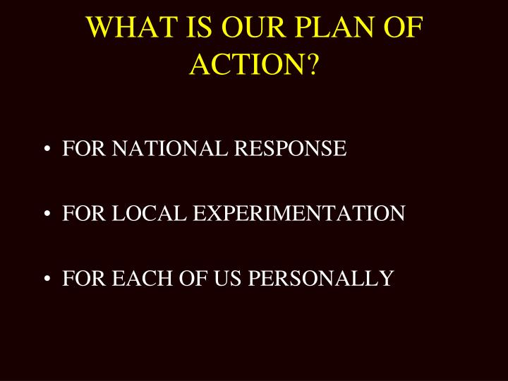 WHAT IS OUR PLAN OF ACTION?