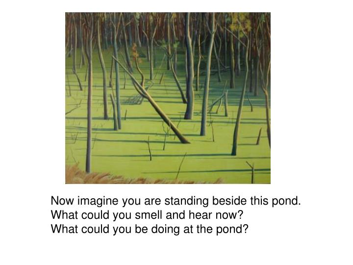 Now imagine you are standing beside this pond.