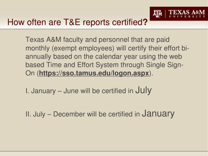 How often are T&E reports certified