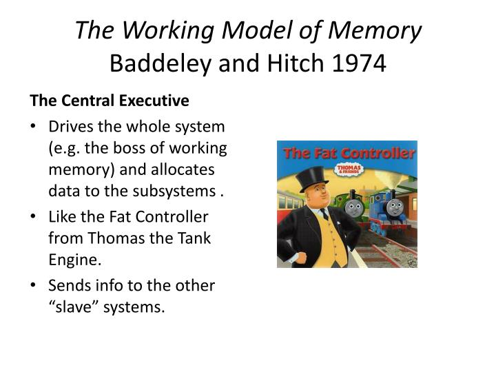 The Working Model of Memory