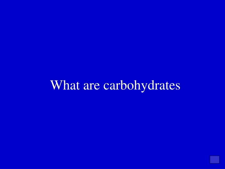 What are carbohydrates