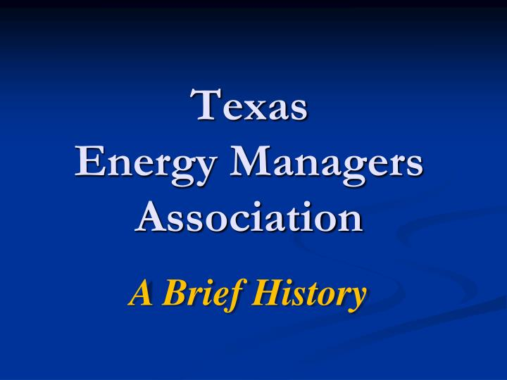 texas energy managers association n.